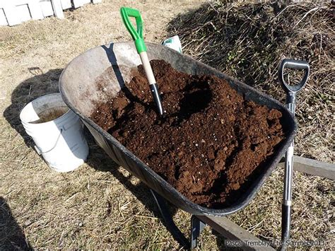 Planter Box Soil by Creating Flower Containers Plant Flowers In Planter Box