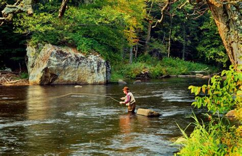 fishing boats for sale near rochester ny 33 best images about adirondack fly fishing on pinterest