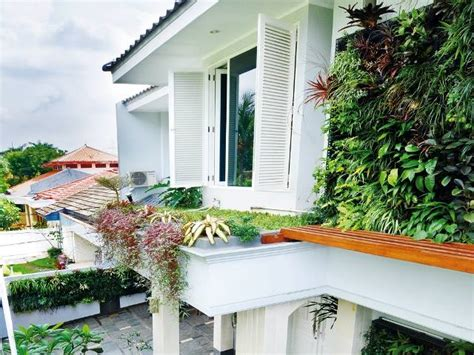 taman vertikal inovasi  rumah berlahan sempit wajib