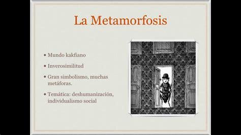 la metamorfosis explicaci 243 n de la metamorfosis de kafka youtube