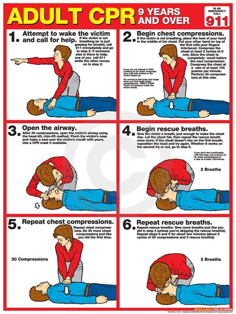 printable cpr poster adult cpr poster usa labor law posters cpr pinterest
