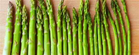 is asparagus for dogs nhv pet products