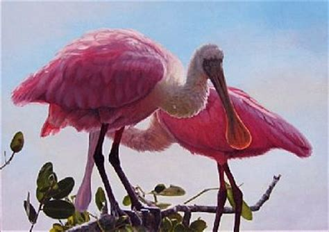 news about artist sally berner realistic north american