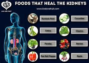 foods that heal the kidneys empoweredliving me