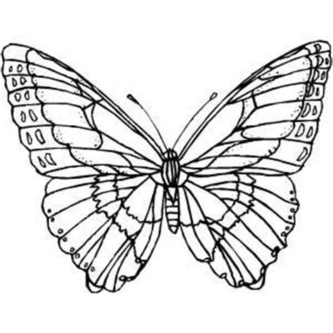 butterfly fairy with wings coloring coloring pages