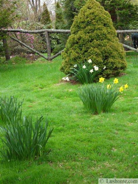 spring garden ideas 20 spring yard landscaping ideas and beautiful garden