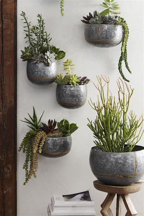 braza wall planters vertical wall planters succulent wall