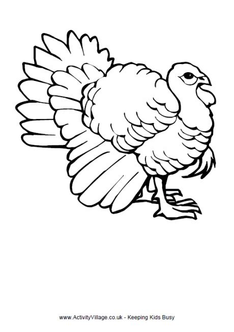 thanksgiving coloring pages activity village turkey colouring page 2