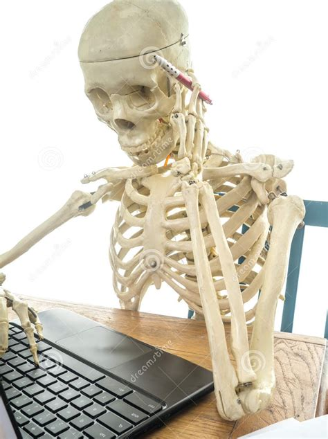 Skeleton Computer Meme - image skeleton at a computer book of shadows meme jpeg