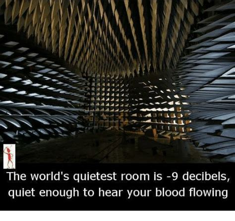 the worlds quietest room 25 best memes about world quietest room world quietest room memes