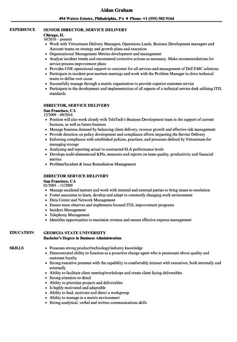 resume format for service delivery manager director service delivery resume sles velvet