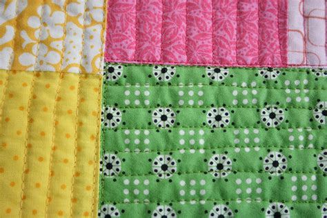 What Is A Quilting Foot by Quilts Line Quilting With A Free