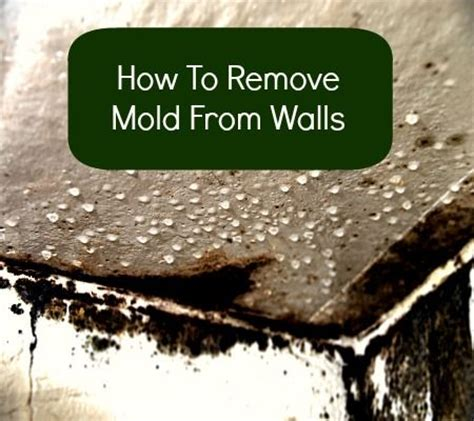 how to remove a wall how to remove mold from walls from housewifehow to s