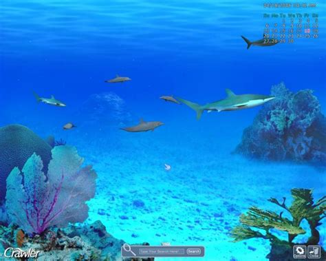 serenescreen marine aquarium download serenescreen marine aquarium lite screensaver free
