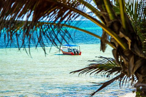 glass bottom boat mombasa mombasa kenya is the perfect apr 233 s safari destination goway