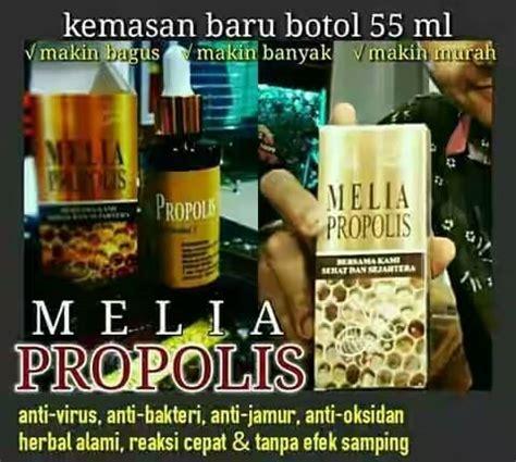 Terbatas Melia Propolis Asli Pt Mss 1box Isi 7 Botol melia propolis asli jual melia propolis 100 asli order now fast respond