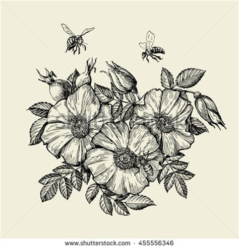 bee flower stock images royalty free images amp vectors