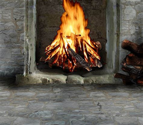 Fireplace Ashes In Garden by Using Wood Ashes In Your Garden Sunday Gardener