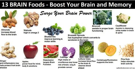 how to feed a brain nutrition for optimal brain function and repair books brain foods healthy