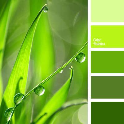 grass green color grass color color palette ideas