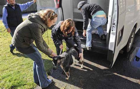stanley park petting zoo staff  board warned