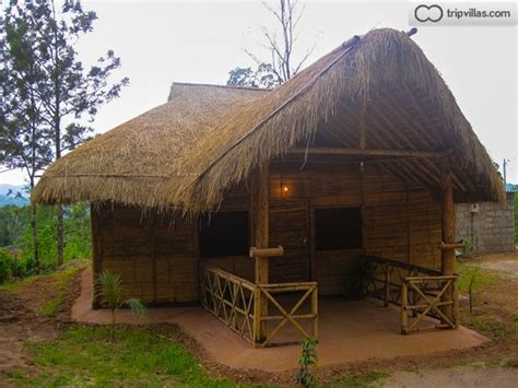 Cottages In Coorg Madikeri bamboo cottages in madikeri tripvillas rentals