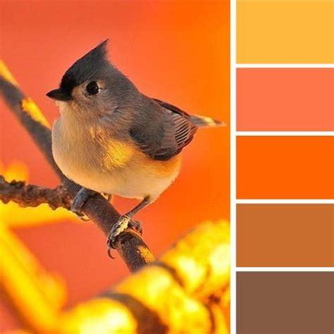 warm orange color 33 orange color schemes inspiring ideas for modern