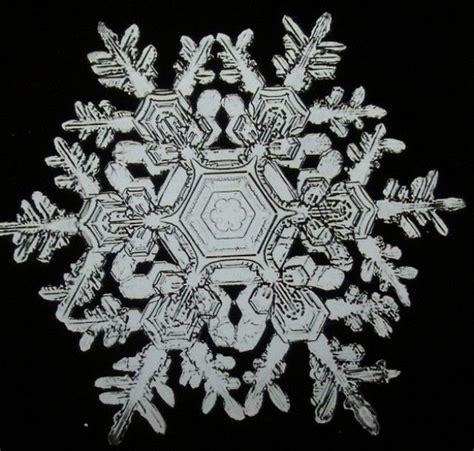 snowflake bentley wilson snowflake bentley 1865 1931 growth and