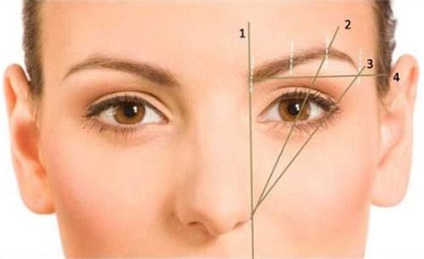 how to get a perfect arch for your eyebrows 14 steps get the perfect eyebrow shapes with these pro tips