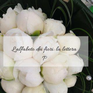 fiori con la lettera e l alfabeto dei fiori la lettera p idee fiorite