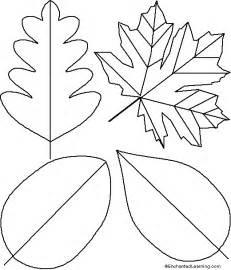 felt leaf template leaf templates already felt flowers nature