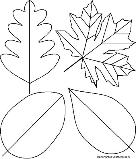 printable fall leaf patterns autumn leaves learningenglish esl