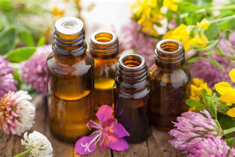 what are aroma made of 12 top essential oils and their uses 60 tips ideas