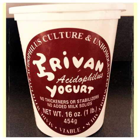Bark 2 Basics Vanilla Yogurt Shoo 16 Oz 473 Ml erivan yogurt whole milk plain 16oz garden of