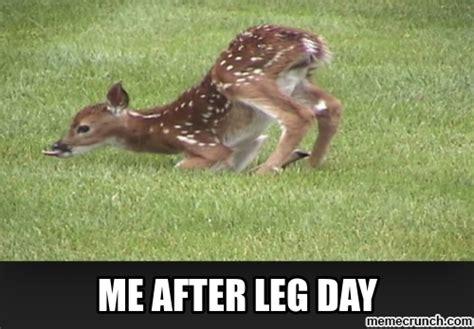after leg day meme after leg day meme 28 images 97 best minnie