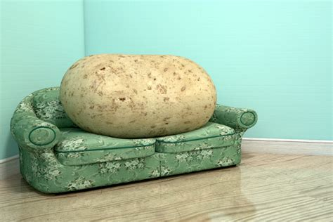 couch potat south africa is one of the laziest countries in the world