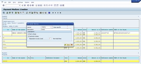 Layout User Specific Sap | change layout of payments summary sap blogs