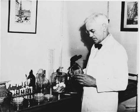alexander fleming invention of penicillin biography com from the programmable computer to slinky ground breaking