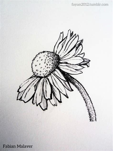 imagenes hipster de rosas tumblr dibujo de flor tumblr