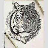 Half Lion Half Tiger Art | 346 x 425 jpeg 44kB