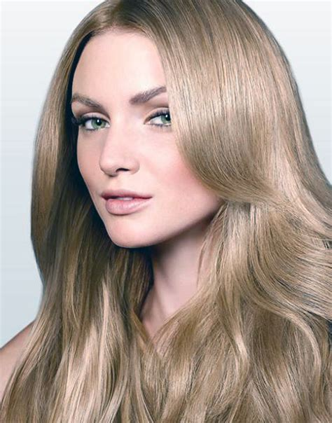 going gray from light golden brown hair with highlights 4 best images of light golden brown hair color chart