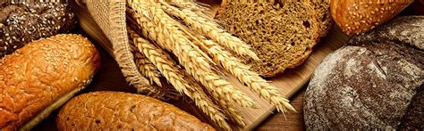 whole grains vs grains whole grains health benefits whole grains vs whole wheat