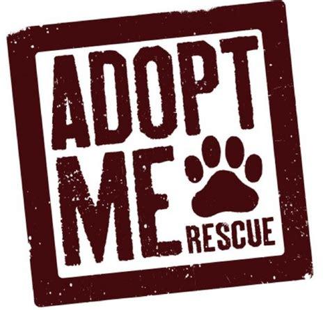 where to adopt a near me adopt me rescue adoptmerescue