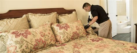 bed bug heat treatment effectiveness bed bug treatments kill bed bugs with heat in knoxville
