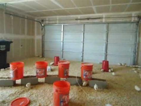 sle business plan for quail farming quail business plan avi youtube