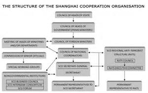 Political Caign Manager Contract Template by Shanghai Cooperation Organisation