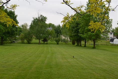 Lawn Garden Early Lawn And Garden Tasks Rmsiblog