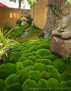 25 best ideas about moss garden on pinterest growing moss moss terrarium and garden statues