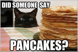 Pancake Memes - free sle short stack of pancakes at perkins 9 24 free