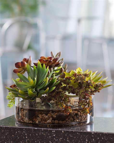 glass terrarium containers homesfeed